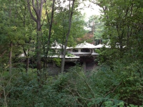 A Mushroom House in the Woods: A New YorkFairytale