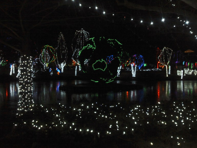 Zoo Lights in Columbus, OH 2011