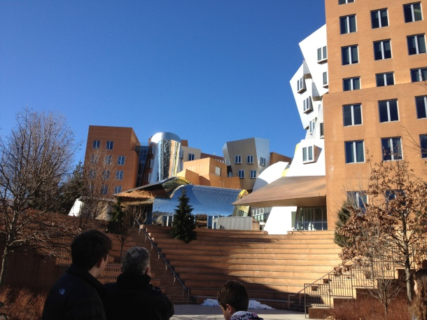 The MIT Stata Center. It looks like it was built by Dr. Seuss. There are almost no  linear lines on the inside!