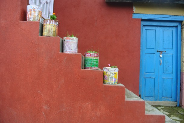 Potted plants in old paint cans in Sermathang.