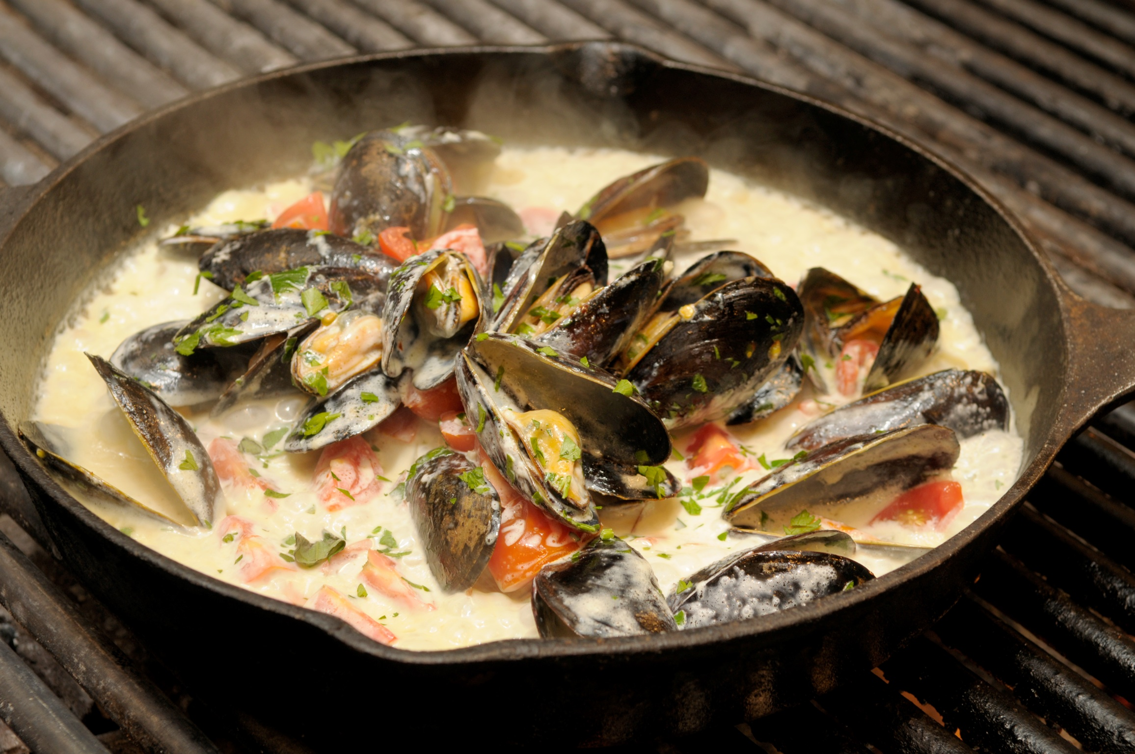 Mussels In Basil Cream Sauce Recipes — Dishmaps