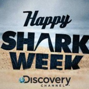 5 Things I Learned from Shark Week