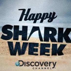 5 Things I Learned from SharkWeek